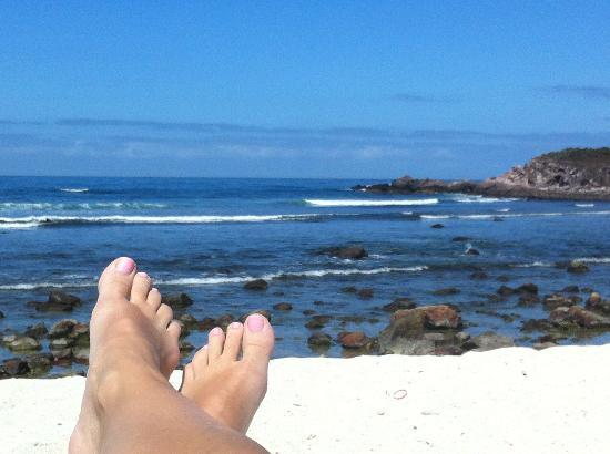 The St Regis Punta Mita Resort Beach View