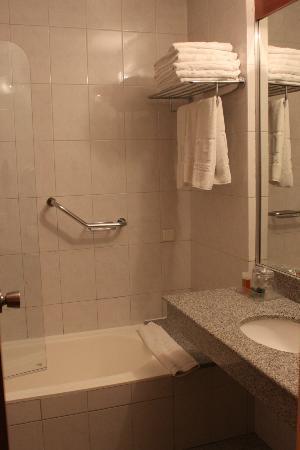 NH Panorama: Baño