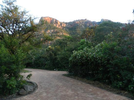 Ithala Game Reserve : Ngotshe behind Ntshondwe Lodge