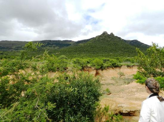 Ithala Game Reserve : More distinctive terrain in Ithala