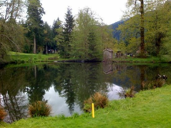 The Courses at The Resort at The Mountain : Pond - Pine Cone course