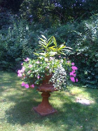 A Butler's Manor: One of the many pots in the garden