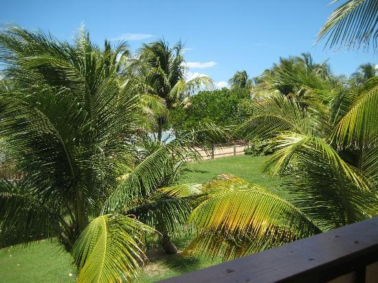 Ababor Suites: View from the veranda