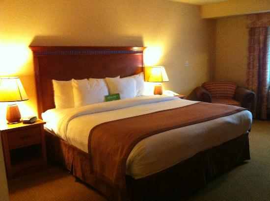La Quinta Inn & Suites Vancouver: King room