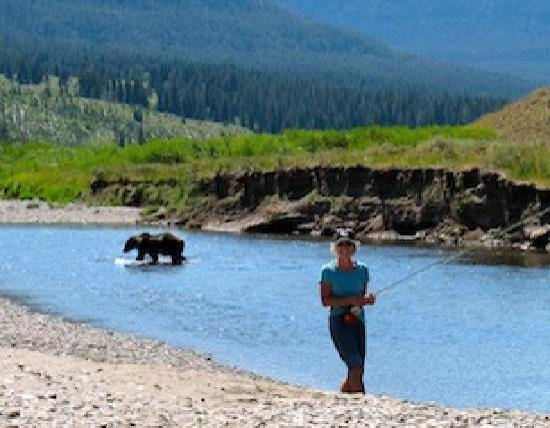 Grizzly bear fly fishing picture of lone peak outfitters for Bozeman fishing report