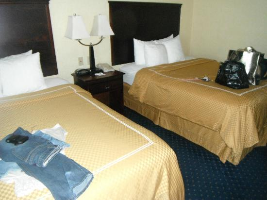 Comfort Suites Columbia Gateway: bedroom