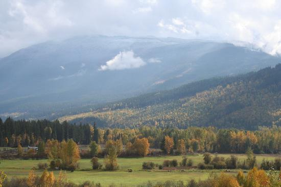 Red Top Bed and Breakfast: Fall view