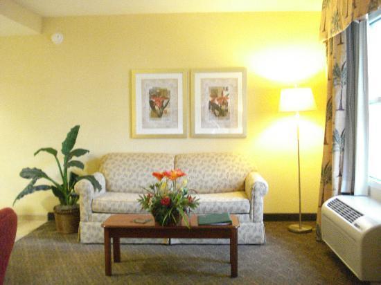 Homewood Suites Daytona Beach Speedway - Airport: living area