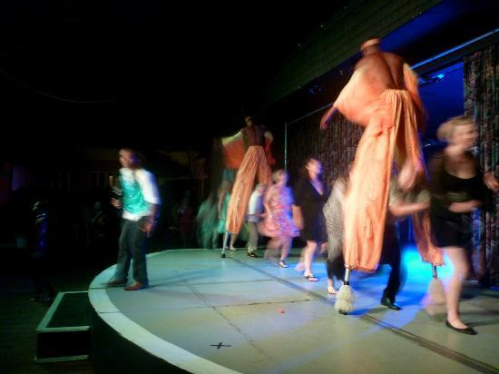 Bajan Roots and Rhythms: At the end of the show, getting everyone involved in a Conga Line.