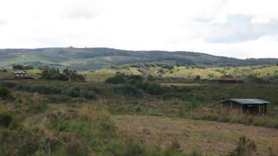 Caballos De Luz: More land