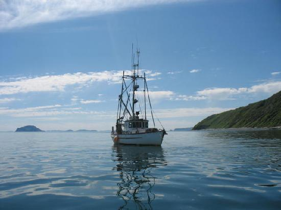 Whalesong Bed and Breakfast: Our fishing vessel f/v Whalesong