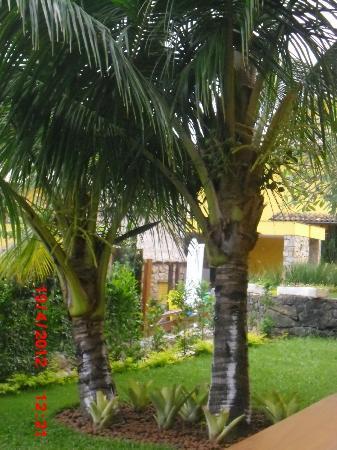 Pousada Joao Fernandes: palmeras muchas palmeras