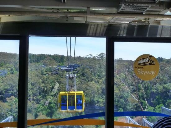 Colourful Trips - Day Tours: Scenic Skyway cable car