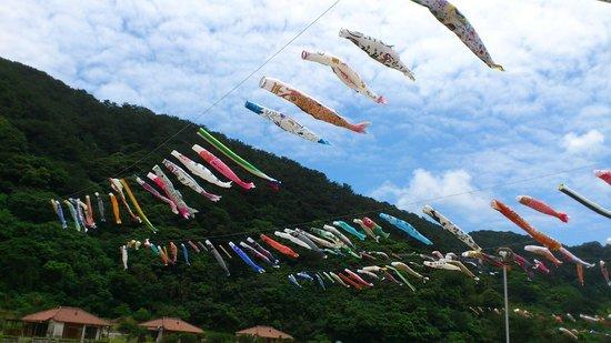Oku Yanbaru no Sato: 奥ヤンバルに鯉が飛ぶ-1