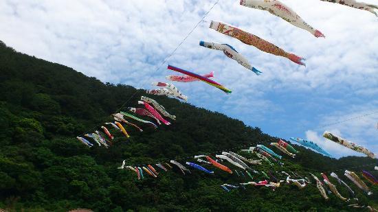 Oku Yanbaru no Sato: 奥ヤンバルに鯉が飛ぶ-3