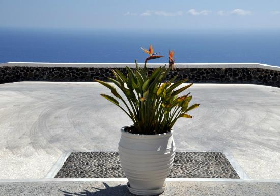 Xenones Filotera: Reception entry to the hotel