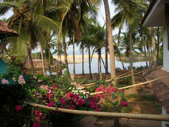 Kannur Beach House: View from the upstairs family rrom. Look out for dolphins.