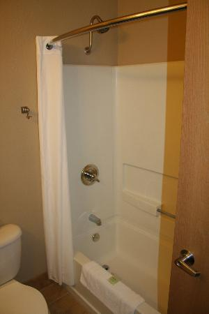 BEST WESTERN PLUS Winslow Inn: Classic tub/shower combo.
