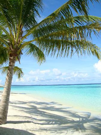 Vakarufalhi Island Resort: Spiaggia lato tramonto