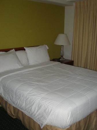 Residence Inn Orlando East/UCF Area: Bed