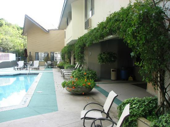 Best Western Plus Novato Oaks Inn: Beautiful lush greenery and flowers around pool.