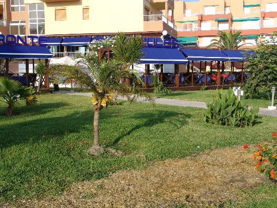 Restaurante Azules: jardin muy agradable