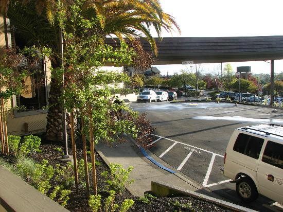 Best Western Plus Novato Oaks Inn照片