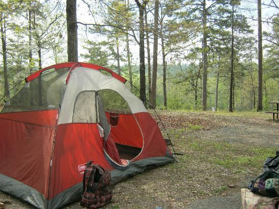 Ron Coleman Mine: campsites