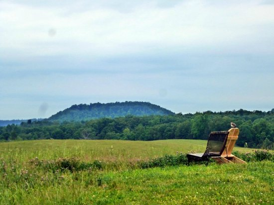 The Abbey of Gethsemani: A place for reading and reflection.
