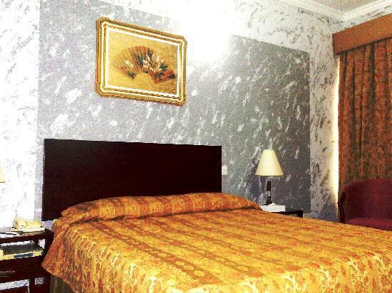 فندق فيرسايلس: Room
