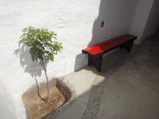Hostal CasArte Takubamba: Naranjo