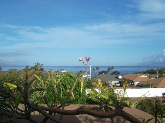 Maui Garden Oasis: Vista dalla nostra terrazza