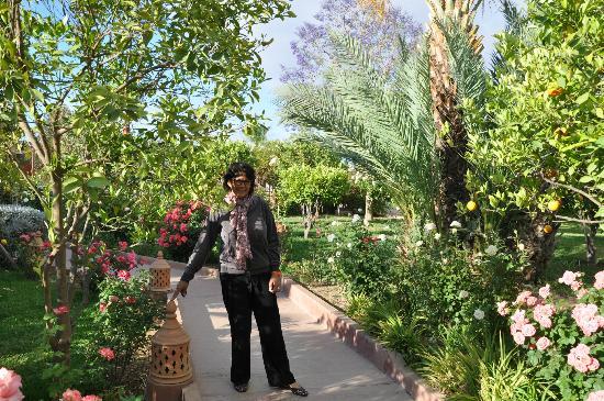 Hotel Dar Zitoune: jardin