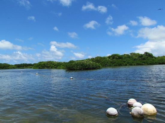 Codrington Lagoon On Barbuda Picture Of Island Routes