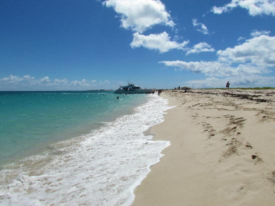 Pink sand beach on Barbuda - Picture of Island Routes ...