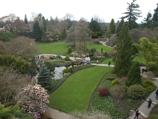Queen Elizabeth Park: Overlooking the manicured quarry garden on a chilly April day--lots more bloom still to come