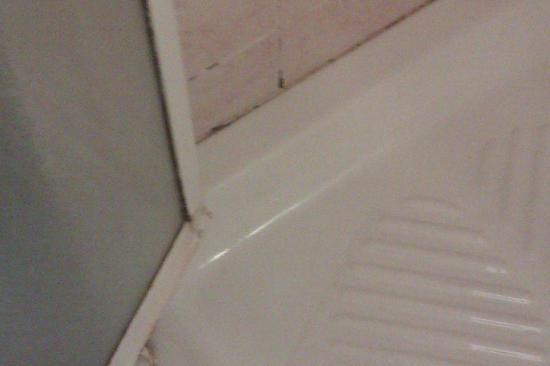 San Pietro Rooms: Particolare della doccia del bagno in camera: incrostazioni e muffe