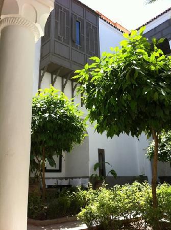 Zaouia 44: nuestra habitación