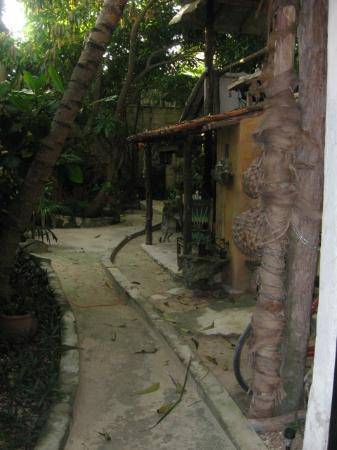 Casitas Kinsol: Kinsol Path