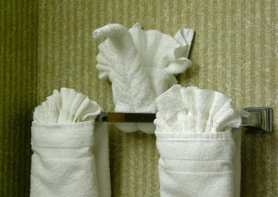 Country Inn & Suites By Carlson, Asheville Downtown Tunnel Road (Biltmore Estate): Here are cute bathroom towels