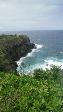 Kilauea Point National Wildlife Refuge: a viewpoint outside the refuge, for those who want to save 5$