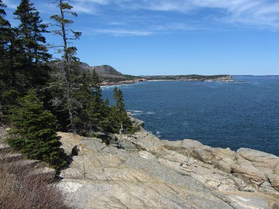 Mount Desert Island: Ocean Path Trail, Acadia NP