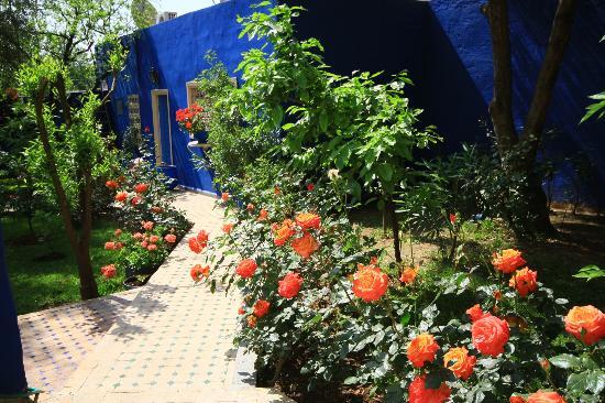 Riad Jean Claude: Le jardin coloré parfumé par ses roses et autres fleurs