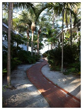 Little Gull Cottages: walkway