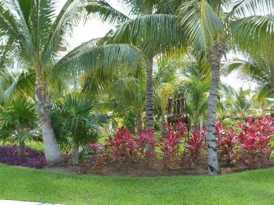 Excellence Playa Mujeres: Gardens