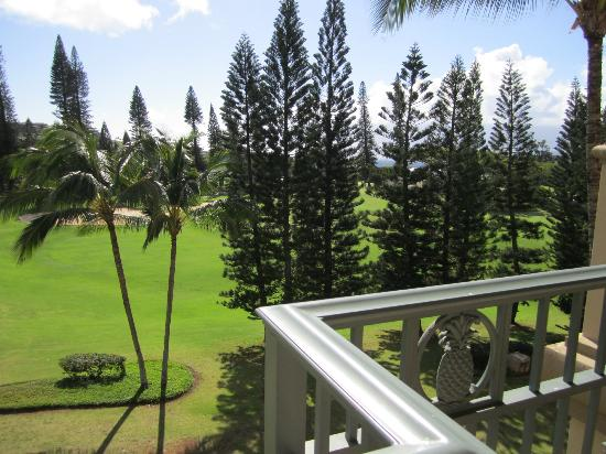 The Ritz-Carlton, Kapalua: The pine trees are so unique
