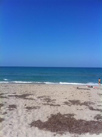 Hampton Inn Jupiter/Juno Beach: the beach!!