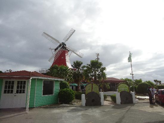Old Dutch Windmill: El Molino
