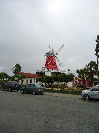 Old Dutch Windmill: El Molino