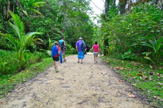 La Loma Jungle Lodge and Chocolate Farm: Walking back to the boat after a trip to Red Frog Beach.